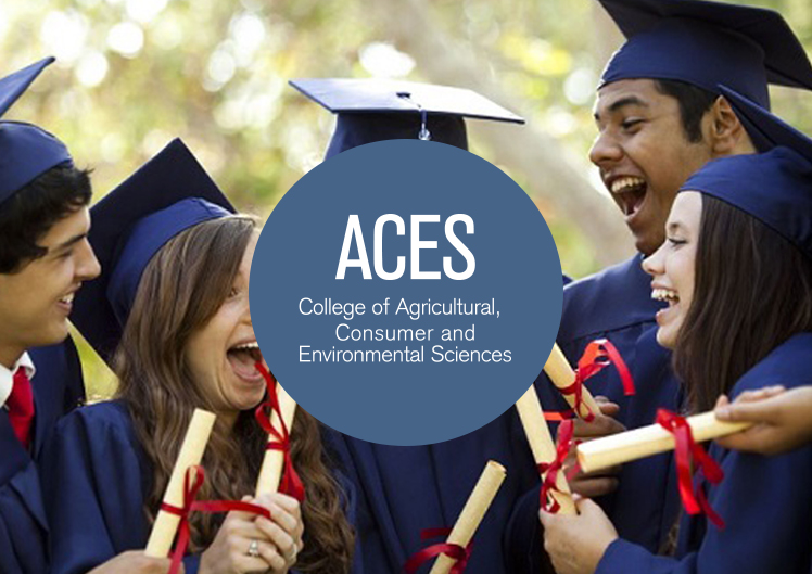 University of Illinois, College of Aces